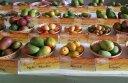 27th Mango Festival 2015